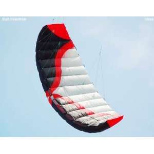kite] dual line parafoil kite power kite 3sqm trainer kite sport kite