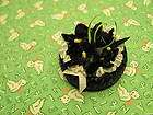 Vintage black straw hat black velvet flowers Fi