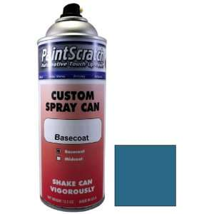Touch Up Paint for 2009 Ford Police Car (color code MM) and Clearcoat