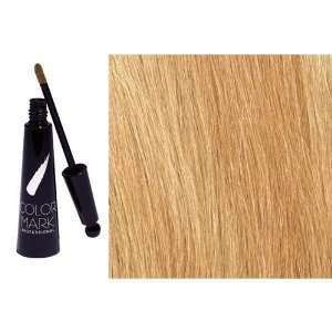 Colormark Hcolor Gray Roots Light Golden Blonde 15 Oz