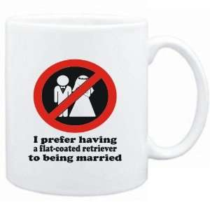 Flat Coated Retriever TO BEING MARRIED !  Dogs Sports & Outdoors