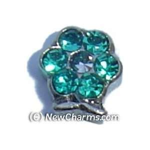 Flower Birthstone December Floating Locket Charm Jewelry