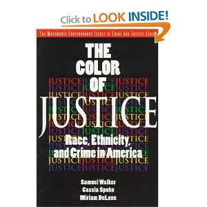 Race, Ethnicity, and Crime in America (Contemporary Issues in Crime