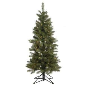 28 Blue Albany Spruce Slim 200 Clear Lights Christmas Tree (A114456