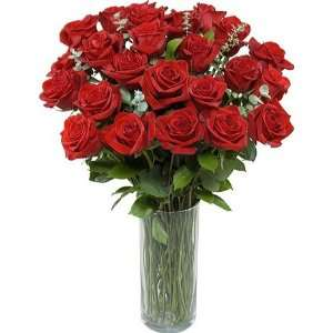Two Dozen Premium Long Stem Red Roses: Grocery & Gourmet Food