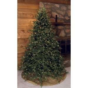 GKI Bethlehem 6.5 Hunter Fir Prelit Christmas Tree