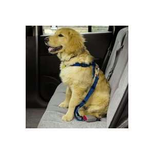 Guardian Gear Car Harnesses