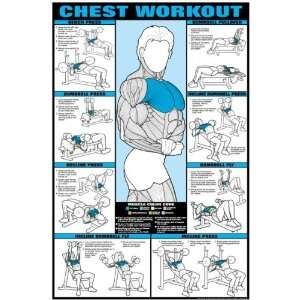 Chest Workout Fitness Chart (Co Ed): Sports & Outdoors