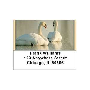Stuck Address Labels Office Products